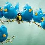 2013-twitter-tips-4