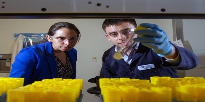 بكتيريا جديدة قادرة على إنتاج وقود حيوي يمكن استخدامه لتشغيل الصواريخ